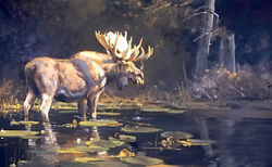 Sanctuary By Luke Frazier Bull Moose Animals Sn Le Wildlife Lithograph On Paper