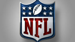 Nfl Sports Fan Premium 28x40 Double Sided Team Banner Flag
