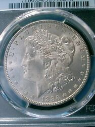1886 Morgan Silver Dollar Mint State Pcgs 64 130 Yr. Old/ Part Of U.s. History