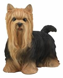 Long Haired Yorkie Statue 11.5