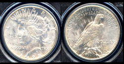 1928-s 1 Ms64 Pcgs-key Date-only 248 In High Grade-peace Dollar