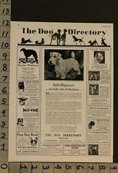 1929 DOG CANINE WELSH TERRIER TOY BREED PUPPY PHOTO AD RU07
