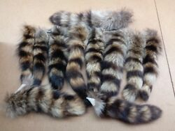 XL Tanned Raccoon TailCraftsReal USA Fur TailHarley partsCoon TailsCat Toys