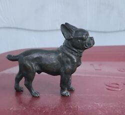 1920's Austrian Bronze French Bulldog  Boston Terrier Dog Figurine
