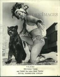 1979 Press Photo Tajana Wild Animal Trainer And