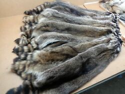 Professionally Tanned 1 Xxxl Raccoon/coon Hide/furs/pelts/taxidermy/crafts