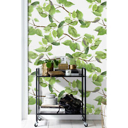 Spring Leaves Removable Wallpaper Green Birch Leaf Wall Decor Composition