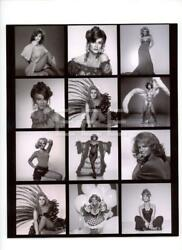 Ann Margret Contact Sheet Photographer Harry Langdon Embossed Stamp Photo 125L