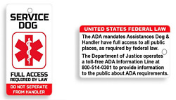 Service Dog Key Chain Size Or Collar Tag For Ada Service Animals