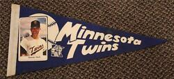 1960and039s Jimmie Hall Minnesota Twins Blue Photo Picture Pennant Very Rare One