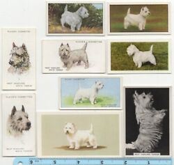 West Island White Terrier Dog Pet Canine 9 Different Vintage Ad Trade Cards #4