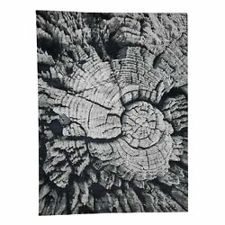 9'x12' Tree Bark Wool And Silk Abstract Design Hand Knotted R41236