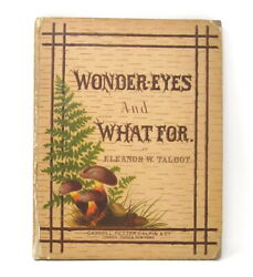 Wonder Eyes And What For Antique Childrens Book Eleanor W Talbot 1880 London