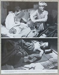 Vintage 11x14 Photograph Wwii Japanese Victims Of Hiroshima Nuclear Bombing 1945