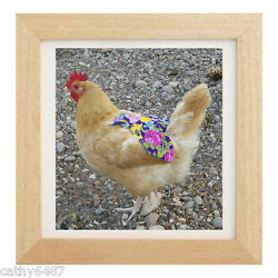 1 CHICKEN SADDLE HEN APRON FEATHER PROTECTION CHICKEN HATCHING EGGS POULTRY