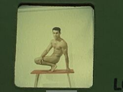 Gay Interest Bruce Of Los Angeles Slide/negatives/male Physique/beefcake/nude