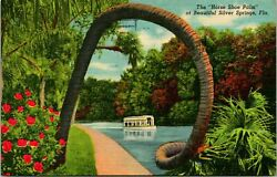 Silver Springs Fl Horse Shoe Palm Boat Postcard Used 12018