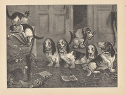 BASSET HOUND DOGS INTERRUPT CATS CHEWING UP LOUIS WAIN BOOK ANTIQUE PRINT 1886