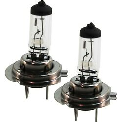 New Headlight Bulbs Lamps Set Of 2 Driver And Passenger Side Mercedes 330 760 Pair