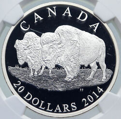 2014 Canada Uk Queen Elizabeth Ii Bull And Mate Proof Silver 20 Coin Ngc I86160