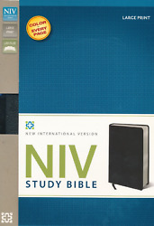 Niv Study Bible Large Print Bonded Leather Black 10 Pts Brand New In Shrink Wrap
