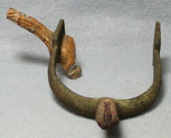 Civil War Relic U.s. M1859 Spur With A Root Growing Through The Strap Plate