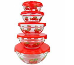 10 Pcs Glass Lunch Bowls Food Storage Containers Set With Lids And Apple Design