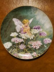 Flower Fairy Plate Sets, Heinrich, Villeroy And Boch, 2 Entire Sets, 24 Plates.