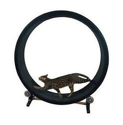 Cat Exercise Wheel Toy Pet The Best Fast Indoor Cat Treadmill Exercise Fitness