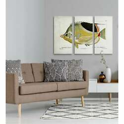 Fish Sketch I-a Premium Multi Piece Art Available In 3 Sizes Oversized