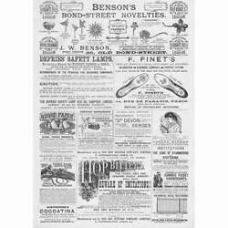 Victorian Adverts, Pinet's Shoes, Hop Bitters Co, Brooches - Antique Print 1888