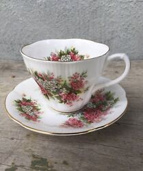 Royal Albert Vintage Tea Cup And Saucer Blossom Time Series Hawthorn Excellent