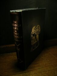 The Hidden Life In Freemasonry - Leadbeater Occult Theosophy Esoteric Symbology
