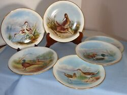 Set Of 6 Antique Royal Worcester Hand Painted Wild Bird Plate Plates