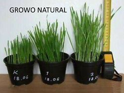 Natural Liquid Vermicompost Fertilizer Extract-makes 5555 Gallons-free Freight