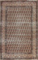 Antique Paisley Ivory Hand-knotted Area Rug Evenly Low Pile Oriental Carpet 7x10