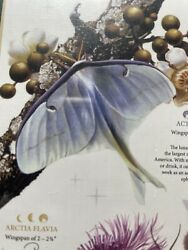 Cobblehill 1000 Pc Moths Puzzle - Random Cut - Poster Science Nature Sealed/new