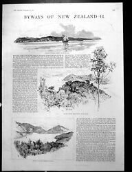 Old Antique Print Whaling Station Russell Bay Islands Pelorus Sound 1887 19th