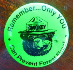 Smokey The Bear,remember Only You Can Prevent Forest Fires Green Pin Button Vtg