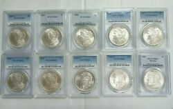 Lot Of 10 Morgan Silver Dollar 10 Mixed Date / Po Ms64 Pcgs Lite Tone Coin L003
