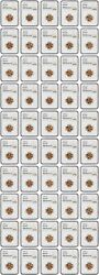 Roll Of 1954-d 1c Ngc Ms66 Rd 50 Coins Total - Lincoln Cent