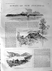 Old Antique Print 1887 New Zealand Picton Pelorus Whaling Table Mountain 19th