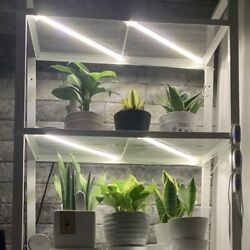 Led Grow Light Full Spectrum 8bar Set For Indoor Veg Plant With Timer Hydroponic