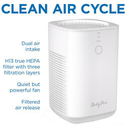 Air Purifier With True Hepa Filter,quiet Cleaner For Pets Dust Pollen Hair Odors