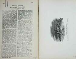 Old Antique Print Baily's Magazine 1896 Man Horse Storm Clennel Babbage 19th