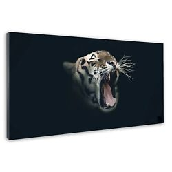 Yawning Big Cat Tiger Cute Tongue Exposed Canvas Print Wall Art Picture