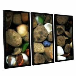 Artwall Kevin Calkins ' Petoskey Stone Collage Iii 3 Piece Extra Large