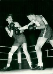 Middleweight boxer Vintage photograph 3782554