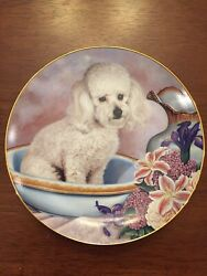 ⭐️bathing Beauty Entitled Poodle Collection Plate By Danbury Mint