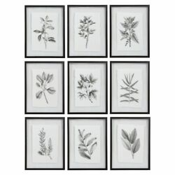Farmhouse Florals - 23 Inch Framed Print Set Of 9 - 17.5 Inches Wide By 0.75